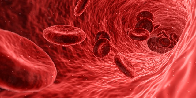 increase white blood cells with traditional chinese medicine